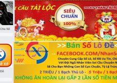<span>Truy tố hình sự 6 người kinh doanh Cá độ lô đề tại Đà Nẵng</span>